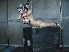 Алисса Линн течёт от жестких пыток хозяина