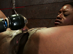 White master makes buff black slave Kelli Provocateur cum hard